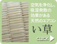 竹シリーズはこちら