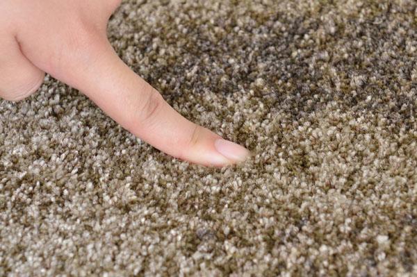 防カビ・防虫に優れたポリプロピレン素材を使用。